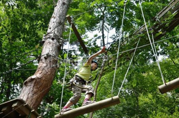 standardropescourse